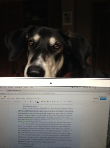 Mom, stop writing and train me to do stupid things like whine on command!